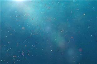 Highest Level Ever of Microplastics on Seafloor