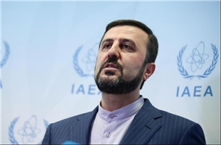 Envoy: Iran First in Cooperating with IAEA Inspectors