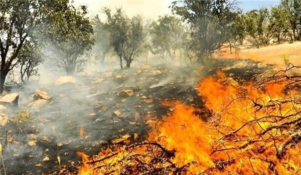 Iran Helps Turkmenistan Quench Border Fire