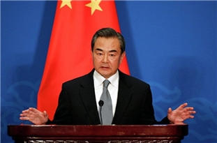 Chinese FM: Identifying Virus Source Must Be Professional, Impartial, Constructive