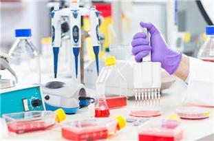 Official: Iran Enjoys Best Laboratorial Structure among EMRO States to Diagnose Coronavirus