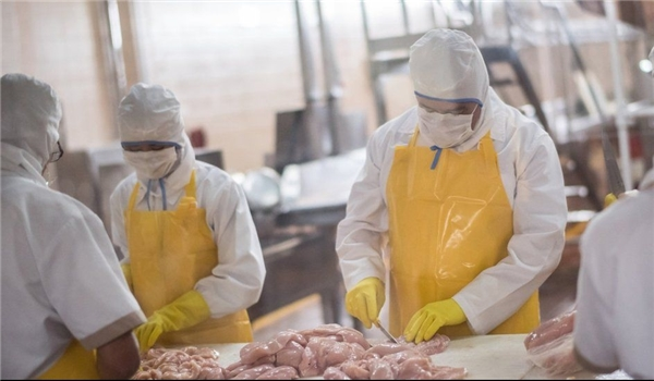 Coronavirus: Research Finds Thousands of Meat Plant Workers Infected at Dozens of Outbreaks in Europe, US