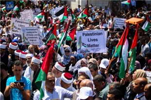 Palestinians Need to Rise in United Ranks against Israeli Bullying, Occupation