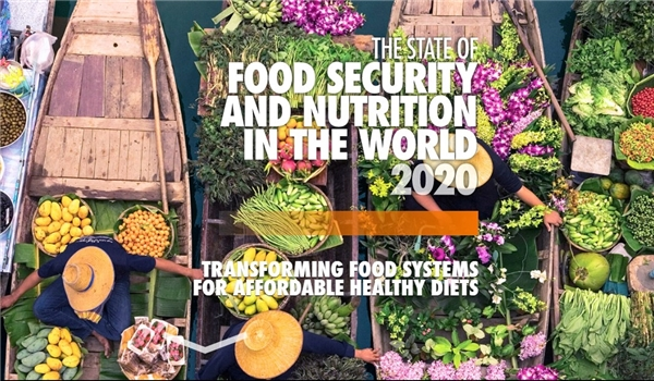 FAO, IFAD, UNICEF, WFP, WHO: Hunger Increases across World, Achieving Zero Hunger by 2030 Is in Doubt