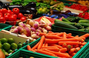 Tehran, Caracas to Develop Agricultural, Food Cooperation