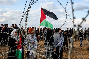 An Ode for the Tragedy of Gaza