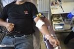 Mounth of Muharram in Iran: Blood Donation on Ashura Day
