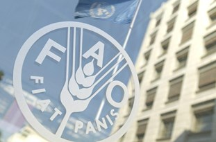 Iran, Asian Nations Discuss Solutions to Tackle Development Challenges in Agriculture, Rural Areas Amid COVID-19 in FAO Regional Conference