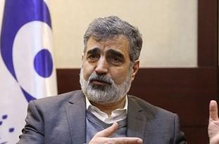 AEOI Spokesman: Natanz Saboteurs Identified