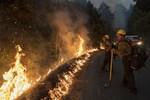 Death Toll Rises as Wildfires Ravage US West Coast