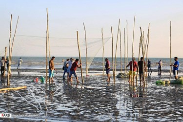 Traditional fishing in Southern Iran Hormozgan