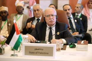 FM: Palestine Decides to Relinquish Its Presidency over Arab League Council