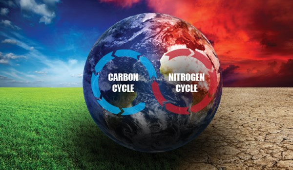 New Understanding of Earth's Carbon Cycle